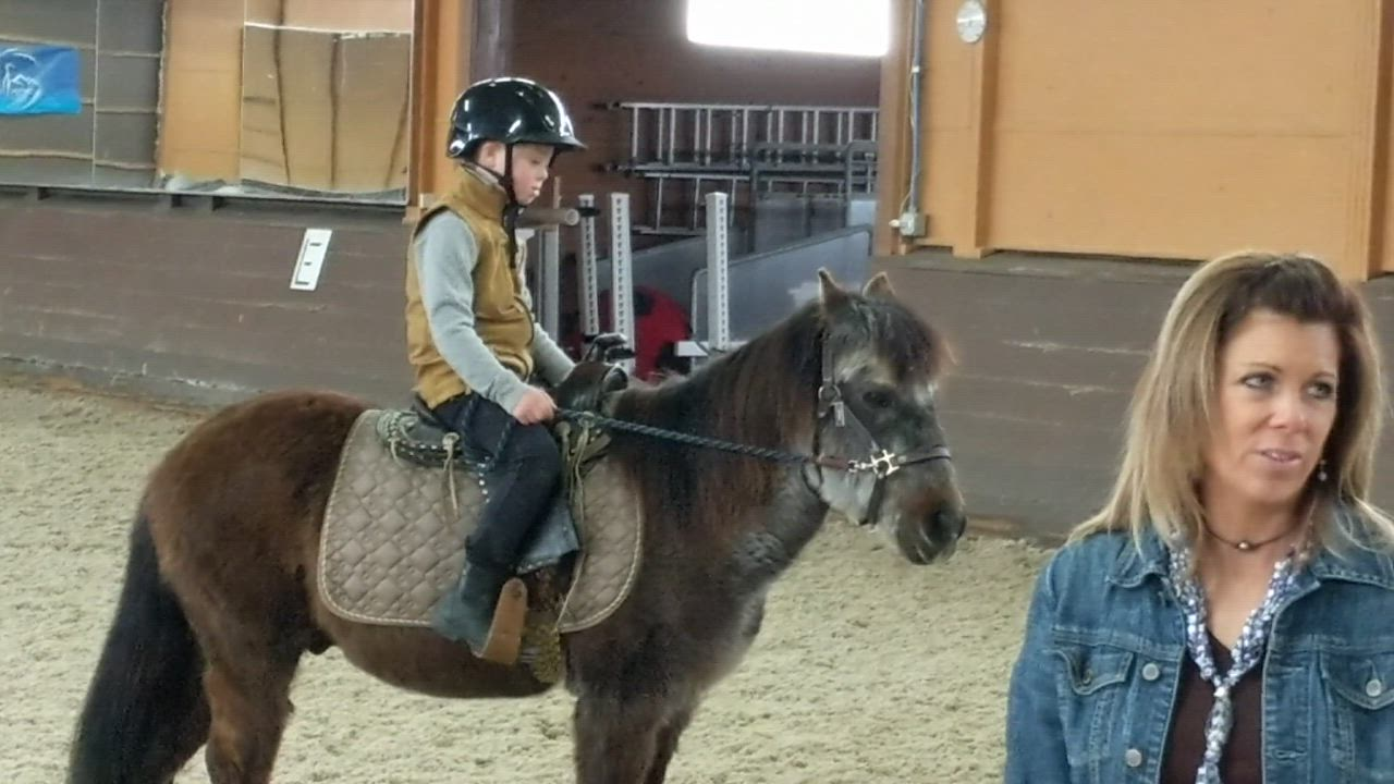 "Josh Martin recited the alphabet as he led the 28-year-old Shetland pony around the ring at the Equestrian Events Stables in Maple Park. A year ago, the 8 1/2-year-old Martin, who has Down syndrome, was afraid of all animals. The budding friendship between the St. Charles boy and the pony is the subject of an award-winning documentary, ""A Pony And His Boy: The Story of Berry and Josh."" No one is more surprised about the friendship between Berry and Josh than his mother, Julie Martin."