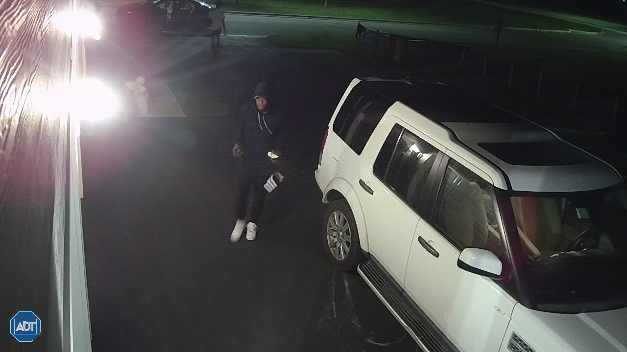 Batavia Police Department has received approximately eight reports of burglary to motor vehicles, which included two stolen vehicles. All of the incidents appear to be related.
