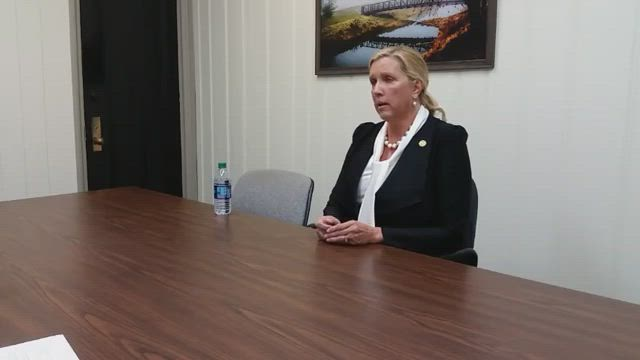 State Sen. Sue Rezin, R-Morris, meets with editors from The Times and the Morris Herald News.