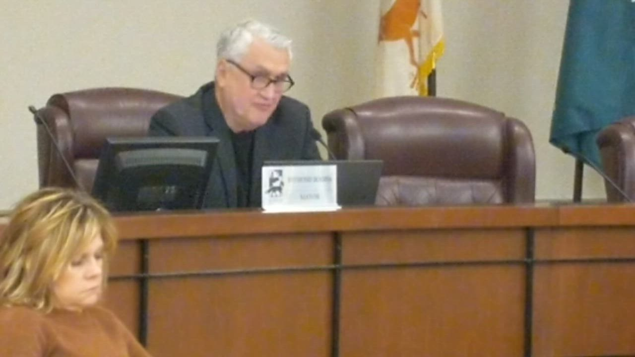 In the face of the COVID-19 (coronavirus) outbreak, the St. Charles City Council on March 18 granted emergency powers to Mayor Ray Rogina in order to prevent disruption to the city's operations.