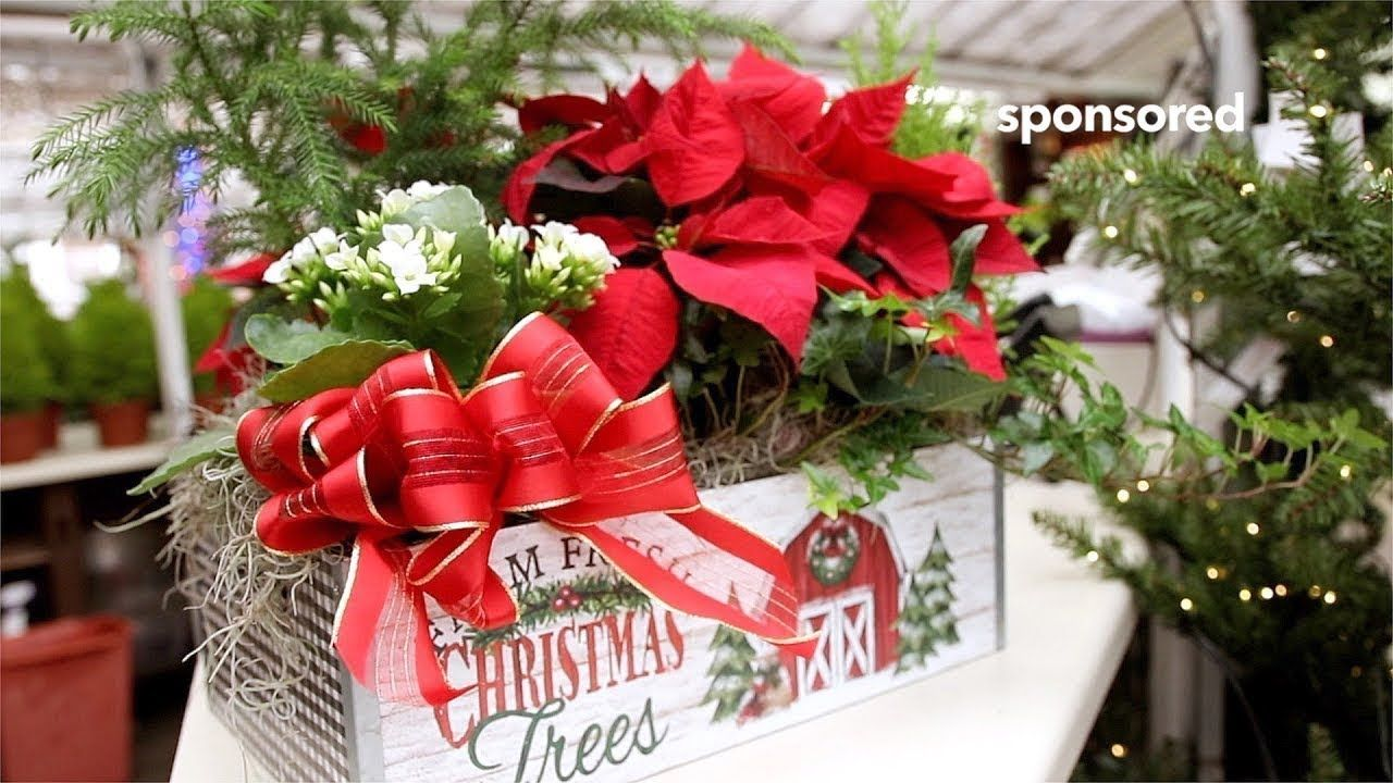 Countryside Flower Shop & Nursery helps you create stunning decor for the season! Carolyn, a Countryside Floral Designer, shows you how to create a Holiday English Garden Basket, that will add an elegant holiday decoration to any home!   Countryside offers everything you need for decorating. Unique gifts and ornaments, pre-lit trees and wreaths, fresh greens and cut trees, thousands of Countryside Home Grown Poinsettias and some of the most breathtaking displays to get your creative juices flowing! Visit us in store or online at www.countrysideflowershop.com